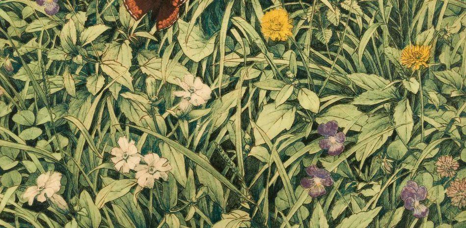Detailansicht von Grita Goetze Wiesenstueck